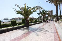 Apartment - Los Cristianos