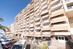 Apartment - Flamingo - Palm Mar - Arona
